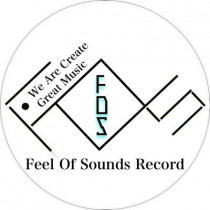 Feel Of Sounds Record